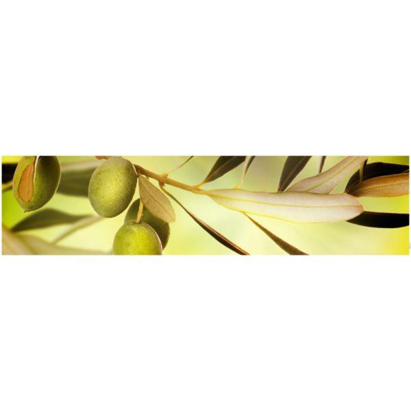 Кухонный фартук Оливковая ветка